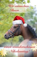 Happy Nikolaus!